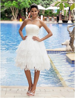 Nz Bride® A Line Petite Plus Sizes Dresses Wedding Dress Classic Timeless Chic Modern Reception Little White Dresses Short Knee Length
