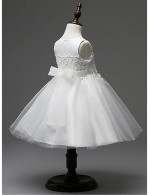 Ball Gown Short Knee Length Flower Girl Dress Organza Sleeveless Jewel With Lace