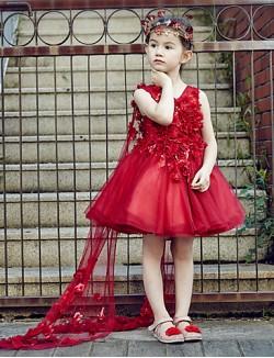 Ball Gown Short Knee Length Flower Girl Dress Tulle Sleeveless V Neck With Crystal Detailing Flower