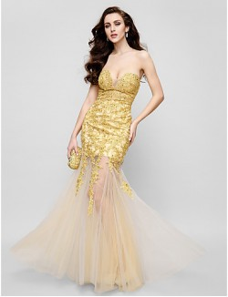 New Zealand Formal Evening Dress Fit Flare Strapless Long Floor Length Lace Dress Tulle With Appliques Lace
