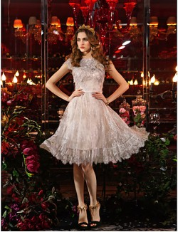 New Zealand Cocktail Party Dresses Prom Gowns Holiday Dress Elegant Vintage Inspired Plus Size Petite Sheath Column Jewel Short Knee Length Lace With