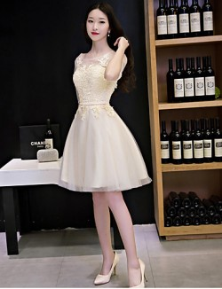 New Zealand Cocktail Party Dress A Line Scoop Short Knee Length Lace Tulle With Lace