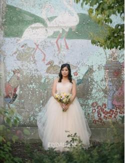 Pastel Blush Strapless Plus Size Wedding Dress Open Back